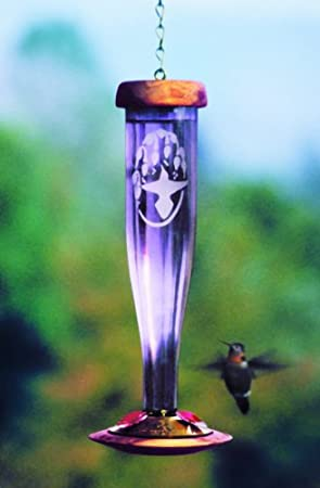 beautiful hummingbird feeder