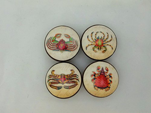 Set of 4 Antique Strange Sea Life Cabinet Knobs (Sea Life Knobs compare prices)