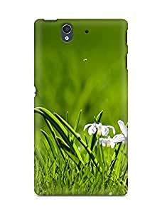 Amez designer printed 3d premium high quality back case cover for Sony Xperia Z (Grass)