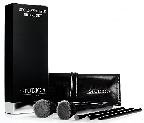 Essentials Brush Set By Studio 5 Cosmetics. Powder, Foundation, Eye-shadow, Blending and Lip Brushes. Case Included. (Kiko Liner compare prices)