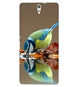 ColourCraft Beautiful Bird Design Back Case Cover for SONY XPERIA C5 ULTRA DUAL