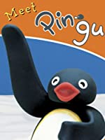 Pingu: Meet Pingu