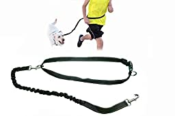 Rugged Hands Free Jogging Dog Leash; Bungee Running Dog Leash with Reflective Strip Black Large