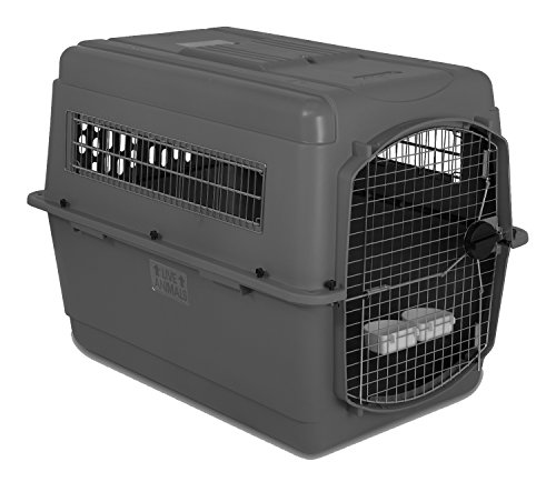Petmate Sky Kennel for Pets from 70 to 90-Pound, Light Gray (Big Dog Kennel compare prices)