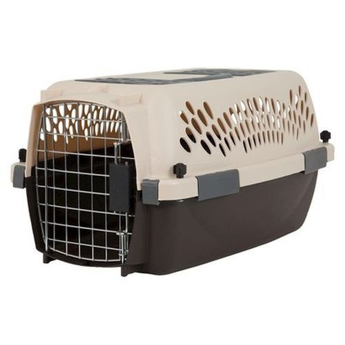 Petmate Pet Carrier
