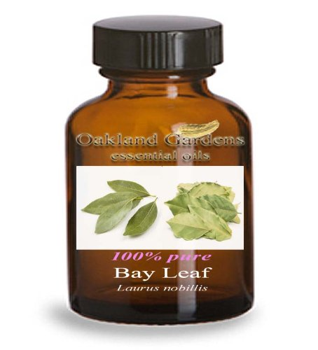 BAY LEAF Essential Oil - 100% PURE Therapeutic Grade Essential Oil - Laurus nobillis - Essential Oil By Oakland Gardens (4 oz Bottle)