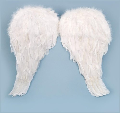 Loftus Interntional - Soft Feather Child Angel Wings