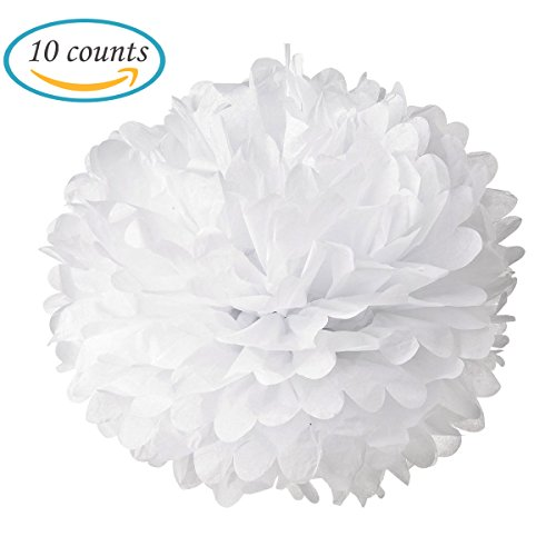 Hmxpls 10pcs Tissue Paper Pom-poms Flower Ball Wedding Party Outdoor Decoration (White)