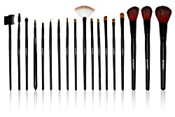 SHANY Cosmetics Urban Gal Collection Brush Kit (18 Piece Pro Brushes with Zebra Magnetic Pouch), 13 Ounce