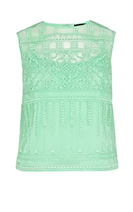 Lace embroidery organza top
