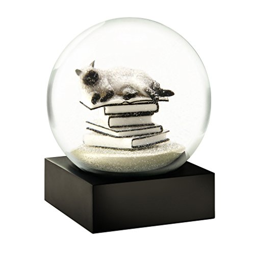 Cat on Books White Snow Globe