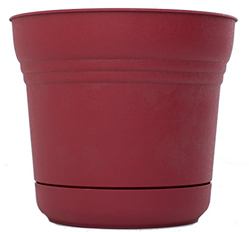 Bloem SP0712 Saturn Planter, 7-Inch, Union Red
