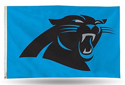 Carolina Panthers NFL 3in X 5in Banner Flag FGB0802