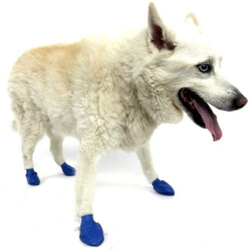 Pawz Water-Proof Dog Boot - Blue, Medium, Up to 3 Inches