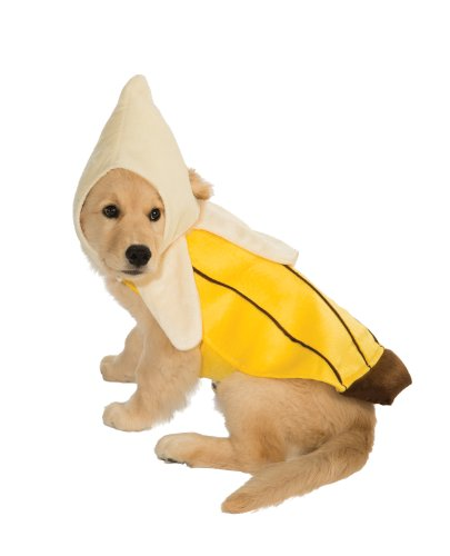 Are Bananas Ok For Dogs To Eat