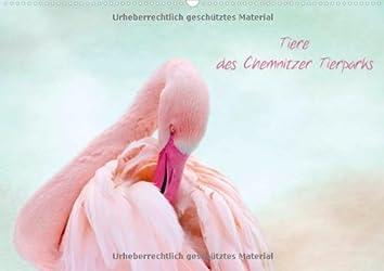 Tiere des Chemnitzer Tierparks (Wandkalender 2014 DIN A3 quer): Wunderschöne Tierparkwelt (Monatskalender, 14 Seiten)