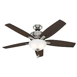 Hunter Fan Company 53312 Newsome Ceiling Fan with Light, 52\