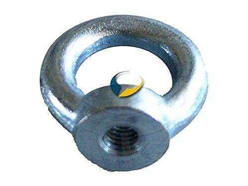 RING NUT M10 GALVANISED