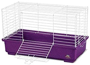 Super Pet My First Home Medium - Rabbit - Colors May Vary