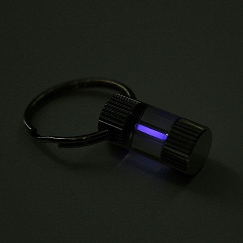 KING DO WAY 15年間自己発光トリチウムガス キーホルダー 光る 無電池、ノー光学ストレージ 盗難防止、忘れ物防止に便利 パプール