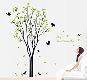 Tarmader My Lime Orange Tree Quote Big Tree with Birds and Leaves Removable Wall Sticker Decals