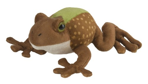 Northern Cricket Frog With Sound Soft Toy - 1