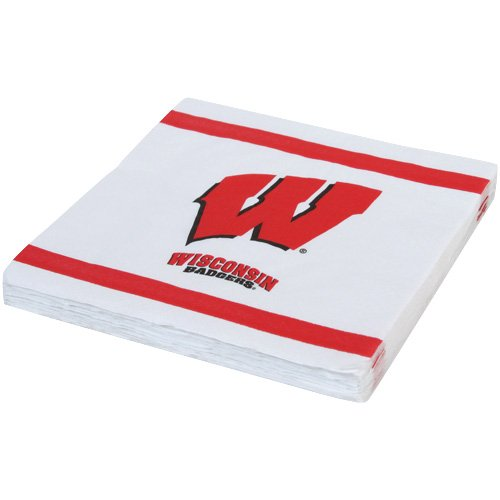 Mayflower Distributing Company 20 Count University of Wisconsin Lunch Napkin, Multicolor