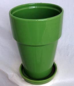"Fiesta Tall Apple Green Ceramic Pot with Attached Saucer - 5.5"" x 7.75"""