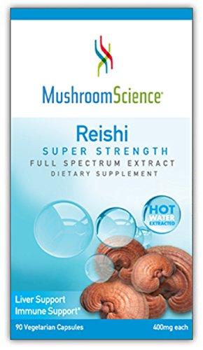 Msm Herbal Supplement