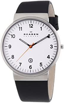 Skagen SKW6024 Mens Quartz Watch