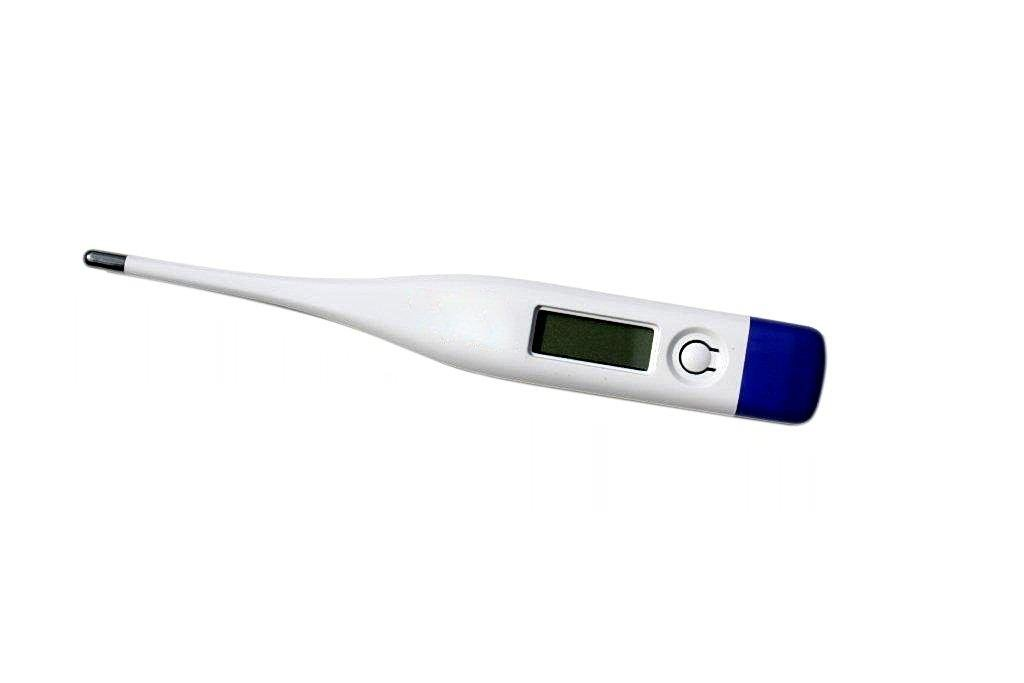 oral thermometers