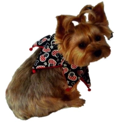 Patriotic Stars & Stripes Hearts & Bones Pet Scrunchie Collar - M/L