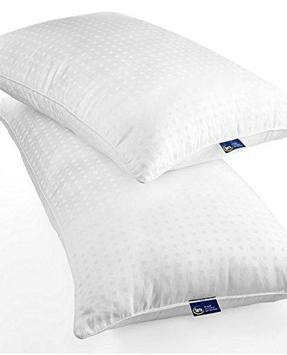 Serta Perfect Sleeper Pillows