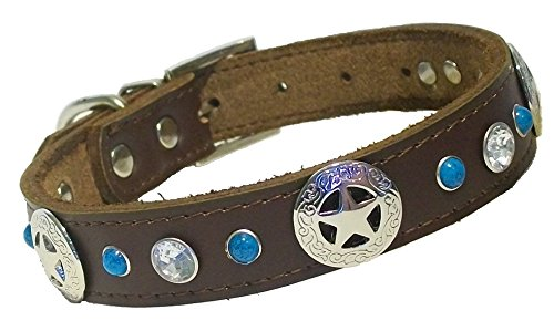 """Texas Star Cowhide Dog Collar - Crystal/Diamond/Rhinestone bling and Turquoise gem on Rich Chocolate Brown Leather - Neck Size 10"""" to 12.5"""" - The Charm of the South West/Western Style and Elegance"""