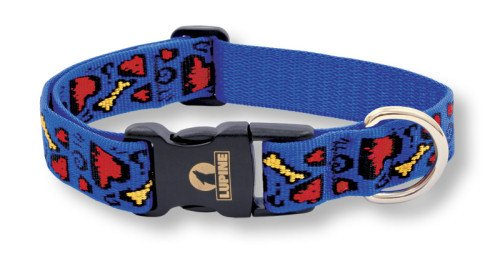 Buy Lupine 1″ Adjustable Collars – Doggie Dreams – 12″-20″