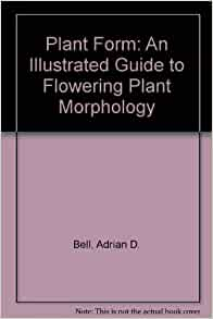 TO PLANT PLANT ILLUSTRATED MORPHOLOGY FORM GUIDE PDF FLOWERING AN