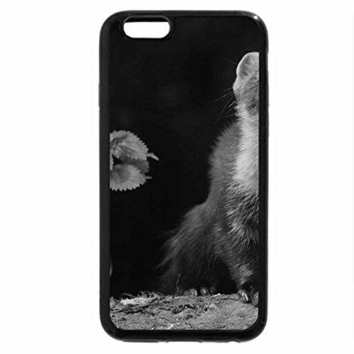iphone-6s-case-iphone-6-case-black-white-small-animals-frette-animal