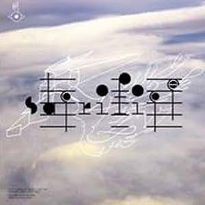 Biophilia Remix Series 2 (Vinyl)