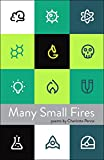 img - for Many Small Fires book / textbook / text book