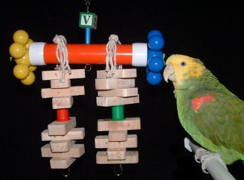 Cheap Whirly Bird Amazon / African Grey Parrot Bird Toy (Junior) (B003RAIXWM)