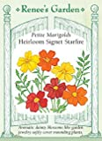 Heirloom Marigolds Container Signet Starfire Seeds