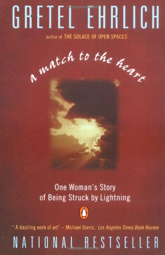A Match to the Heart: One Woman's Story of Being Struck By Lightning