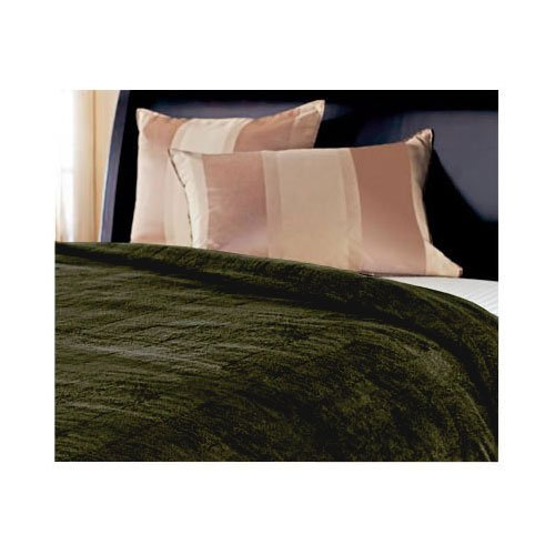 Sunbeam Channeled Microplush Heated Electric Blanket Twin Ivy Green