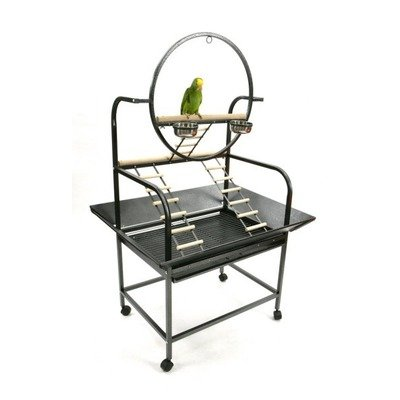 "Cheap A&E Cage Co. J6 The ""O"" Parrot Play Stand Color: Blue (J6Blue)"