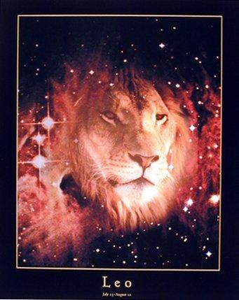 Astrology-Leo-Jul-24-Aug-23-Zodiac-Wall-Decor-Art-Print-Poster-16x20