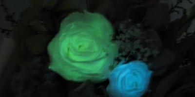 ほんのり香るプリザーブドアレンジ [アロマLu-Ra] レインボーローズと暗闇で光るバラ入り! <送料無料!>