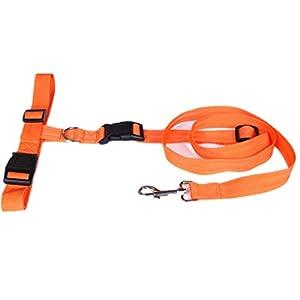 My Sky Running Dog Leash Hands Free Dog Leash, Great for Walking, Running, Biking and Jogging (Orange)