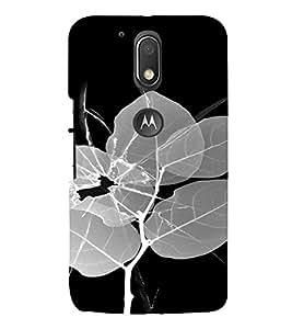 PrintVisa Broken Glass Leaf Design 3D Hard Polycarbonate Designer Back Case Cover for Motorola Moto G4 Plus