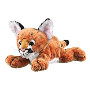 plush cougars personals Find great deals on ebay for ozzie cougar nashville sounds plush hat ozzie the cougar pre-owned $1995 1994 upper deck minors singles pick a player and.