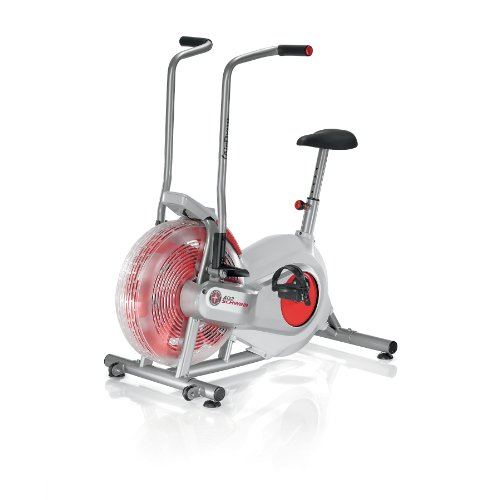 Schwinn AD2 Airdyne Exercise Bike